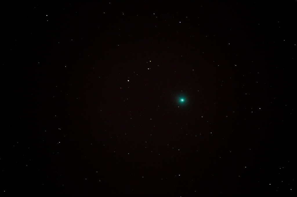 Comet Lovejoy, January 9, 2015 by Tom Wolf. Click to embiggen.